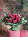 Sugar BLISS-FLOWER-BOUQUET-SUGAR-CORAL-HYDRANGEA-4